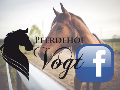 Pferdehof Vogt goes Facebook